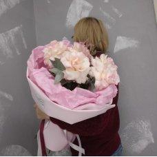 Французская роза (Эсперанса)